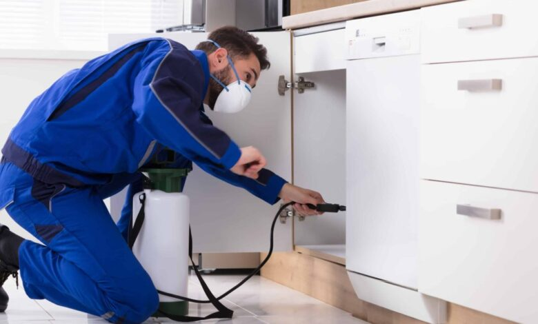 Photo of Four Reasons Why Your Home Needs Pest Control